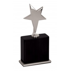"""New""  Silver Star Award with Black Base"